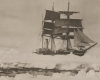 Expedition zum Südpol
